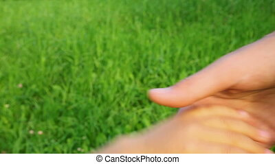 family hands on green grass background