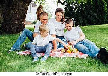 family having fun at a picnic