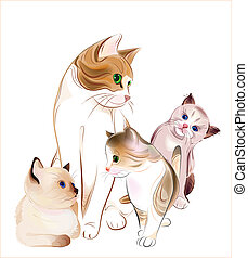 family., heureux, kittens., chat