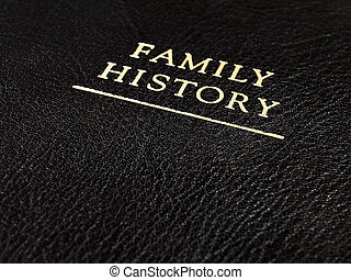 """Macro shot of a the cover of a leather bound book embossed in gold with the words """"Family History"""""""