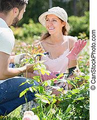 Family in gloves planting garden plants