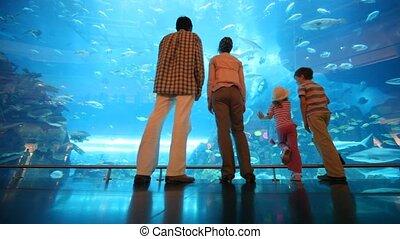 family is standing at a big aquarium