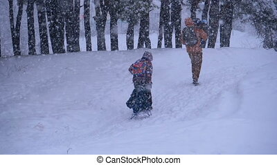 Family of Dad, Mom, Little Son and Daughter riding on a Sled in a Pine Forest in Snowfall. Slow Motion