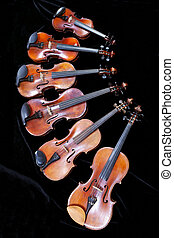 family of different sized fiddles on black