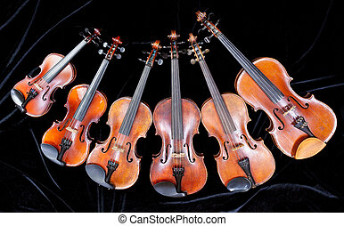 family of different sized violins on black velvet