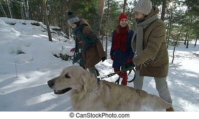 Family of Four and a Dog - Tracking slow motion of family of...