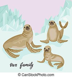 Family of fur seals on the glacier. Vector illustration of animals and natural habitat with the inscription.