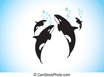 family of killer whales swim & breathing together inside ocean. black and while realistic orca with family happily swimming inside the sea with air bubbles coming out from each - conservation concept