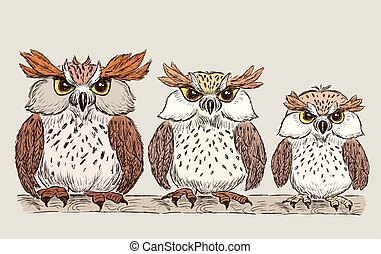 family of the owls