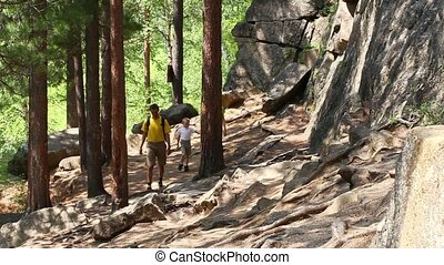 Family on a trekking day in forest
