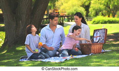Family packing away their picnic