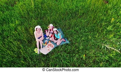 Family picnic on green grass