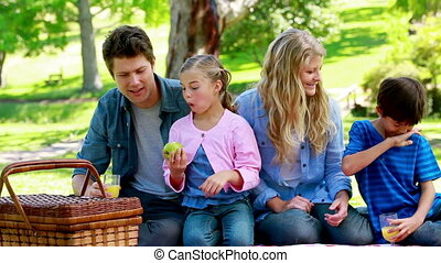 Family picnicking together in a park