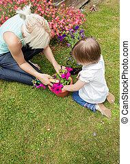 Family plant flowers in the garden
