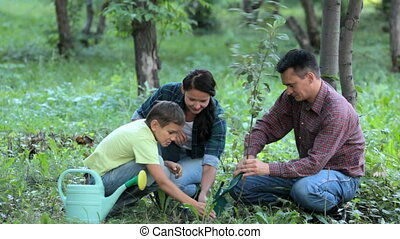 Family planting new tree