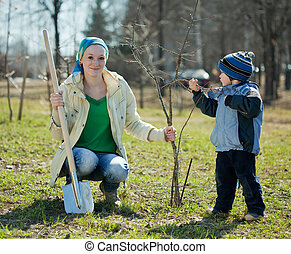 family planting tree with spade outdoor