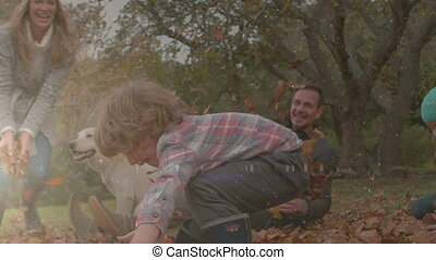 Digital composite video of spot of light against family playing with leaves in the woods. Digital composite video concept