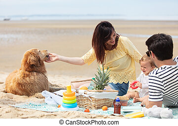 family playing with pet on the beach