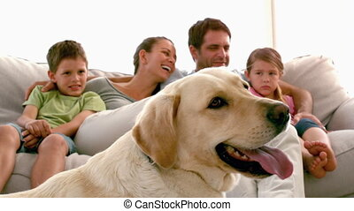 Family sitting on the couch with labrador dog in foreground in slow motion