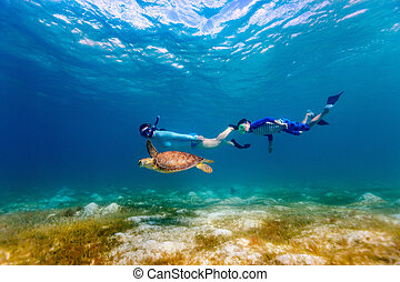 Family snorkeling with sea turtle