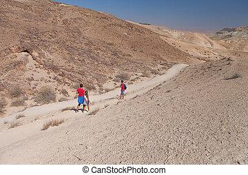 family travel in the desert