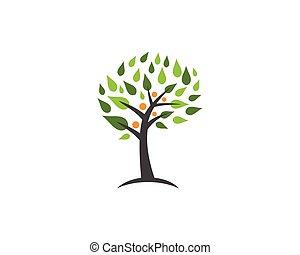 family tree logo design template