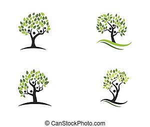 family tree symbol icon