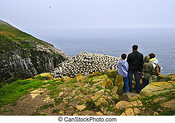 Family visiting Cape St. Mary\'s Ecological Bird Sanctuary in Newfoundland
