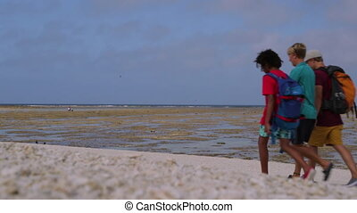 Family Walking Along At Lady Elliot Island Beach