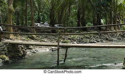 Family walking on bridge in mountain forest
