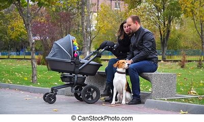 Family with a dog in the park on a bench shakes baby in stroller