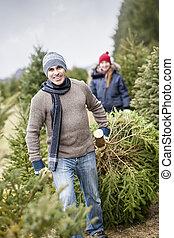 Family with Christmas tree on a farm - Man dragging fresh...