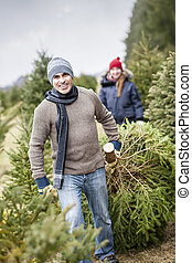 Family with Christmas tree on a farm - Man dragging fresh...