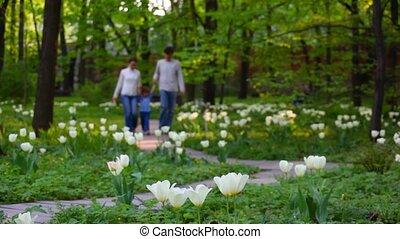 Family with little girl walks on spring park