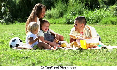 family with picnic