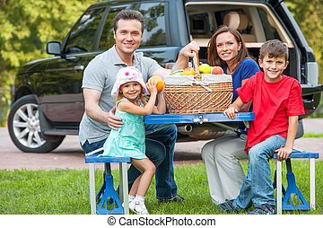 Family with two kids at picnic, sitting together at the...