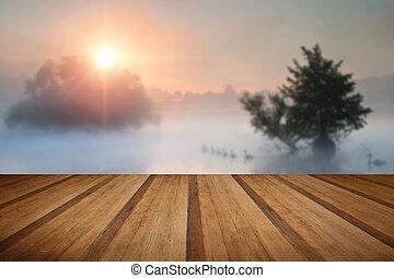 Familyof swans swim across misty foggy Autumn Fall lake at sunrise with wooden planks floor