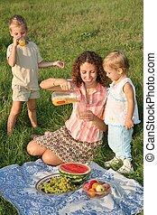 family`s picnic
