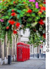 famosos, telefone vermelho, bancas, em, jardim covent, rua, londres, inglaterra