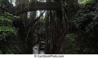 Famous dragon bridge in Sacred Monkey Forest near Ubud...