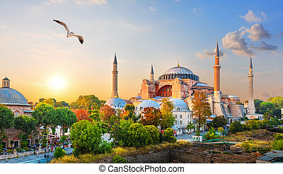 Famous Hagia Sophia in the evening sun rays, Istanbul, Turkey