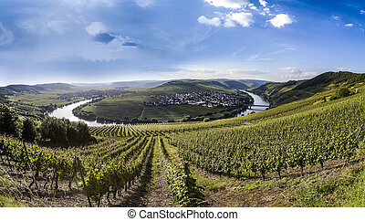famous Moselle Sinuosity in Trittenheim