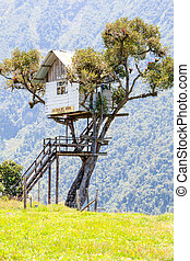 Famous Swing At The End Of The World - Tree House Near Banos...