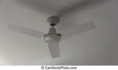 fan., plafond