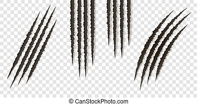Fancy claws scratches - vector isolated. Talons cuts animal cat, dog, tiger, lion
