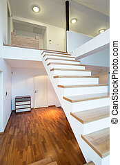 Fancy stairs - Fancy wooden stairs without rails in big...