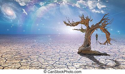 fango, secco, wanderer, deserto