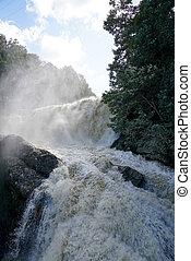 fangoso, río, por, corriente, fluir