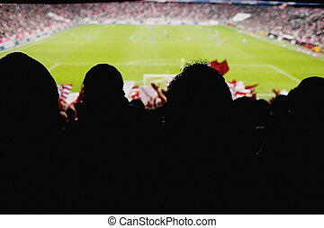 fans cheering soccer game