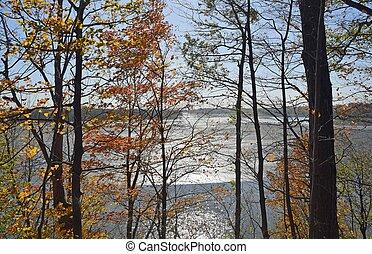 Fanshawe reservoir Autumn - view through a Autumn forest, ...